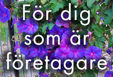 for-foretagare-start
